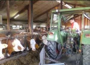 производственная практика в фермерских хозяйствах